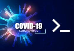 Develop a Linux command-line Tool to Track and Plot Covid-19 Stats