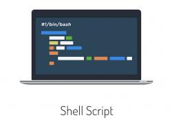 How to Use Shell Scripting in Linux