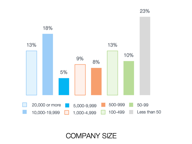 Vulnerability Management Firm Size